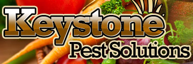 Keystone Pest Solutions Voucher Codes